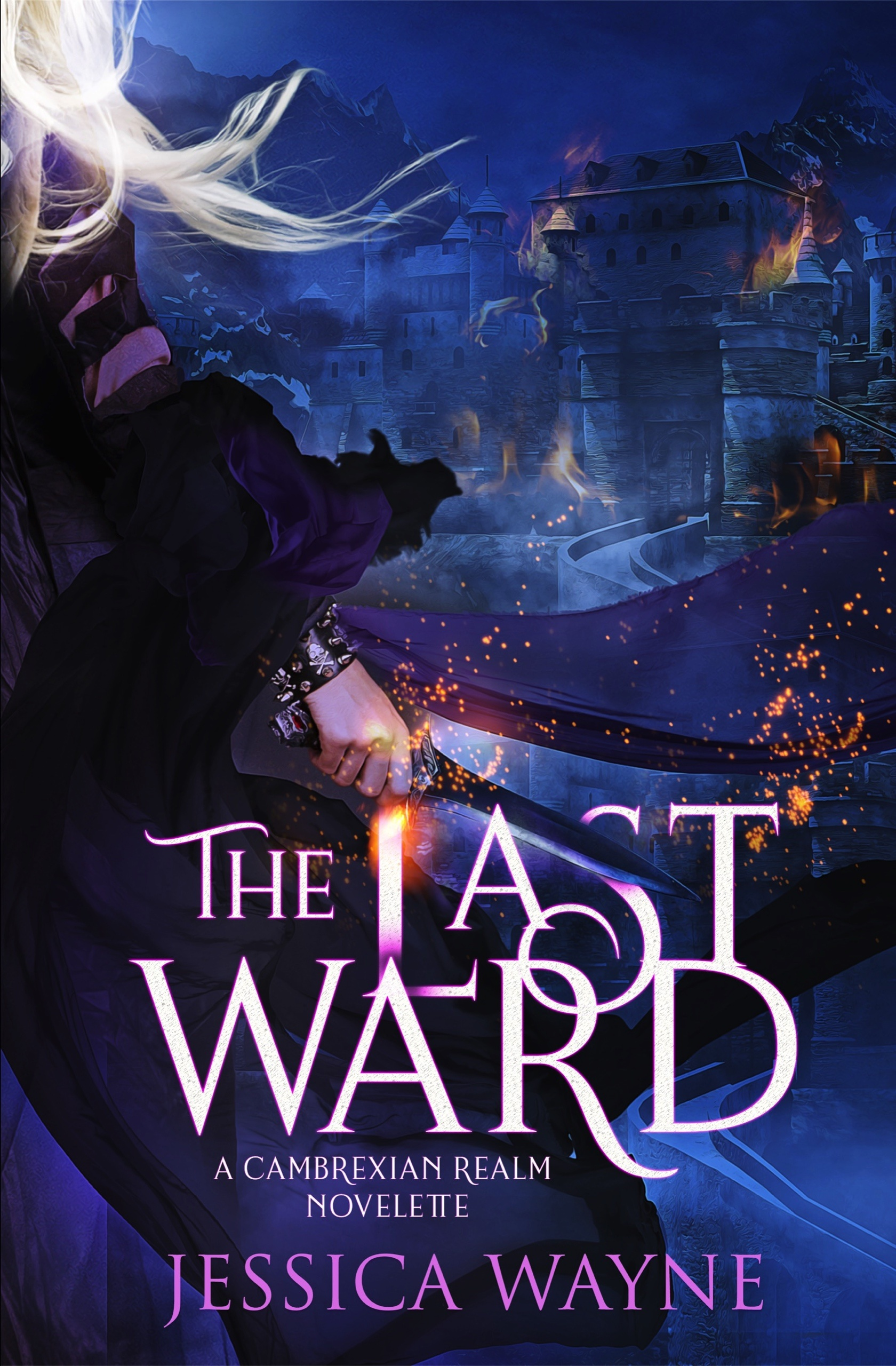 The-Last-Ward-Kindle