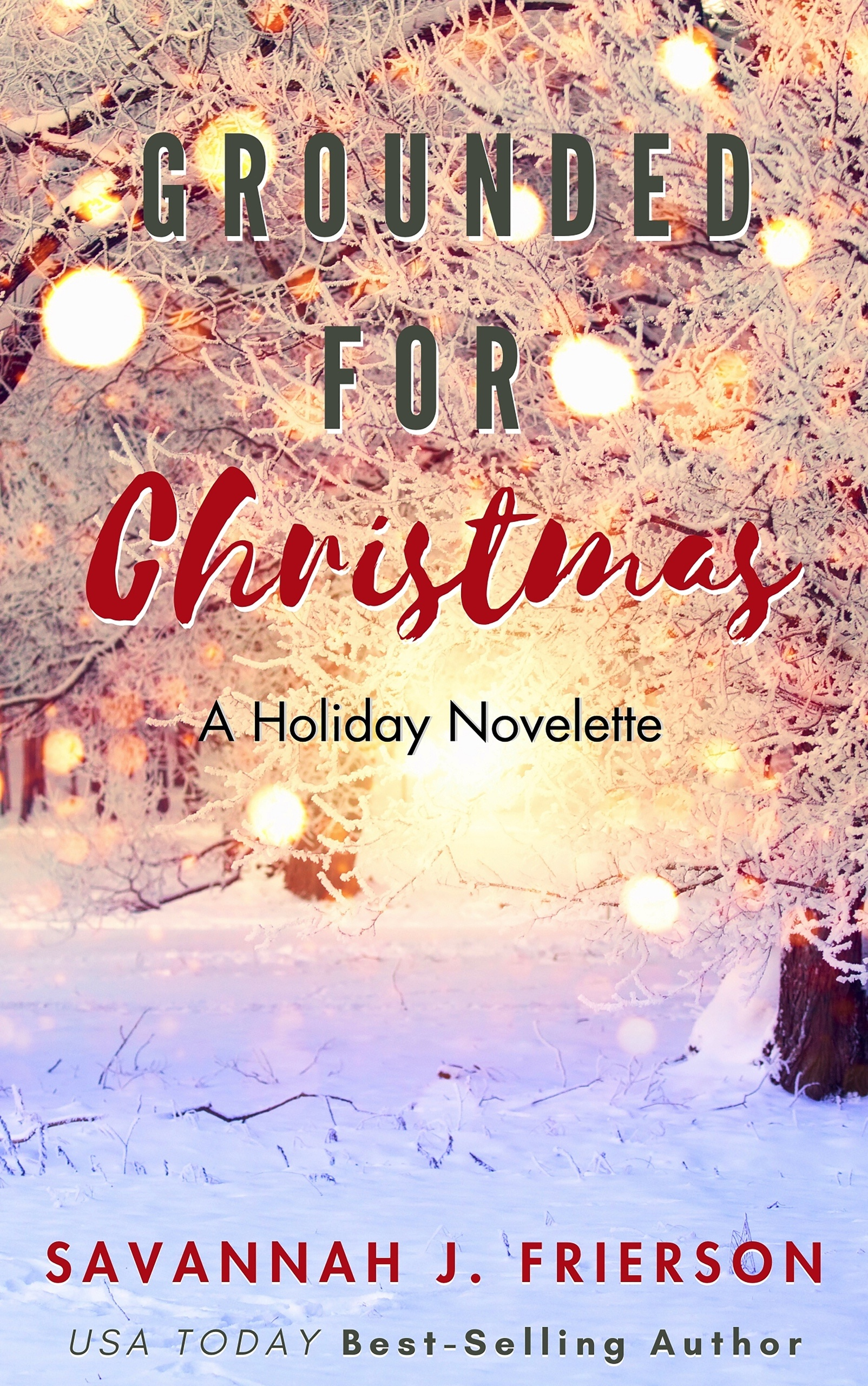 Grounded-for-Christmas-Kindle