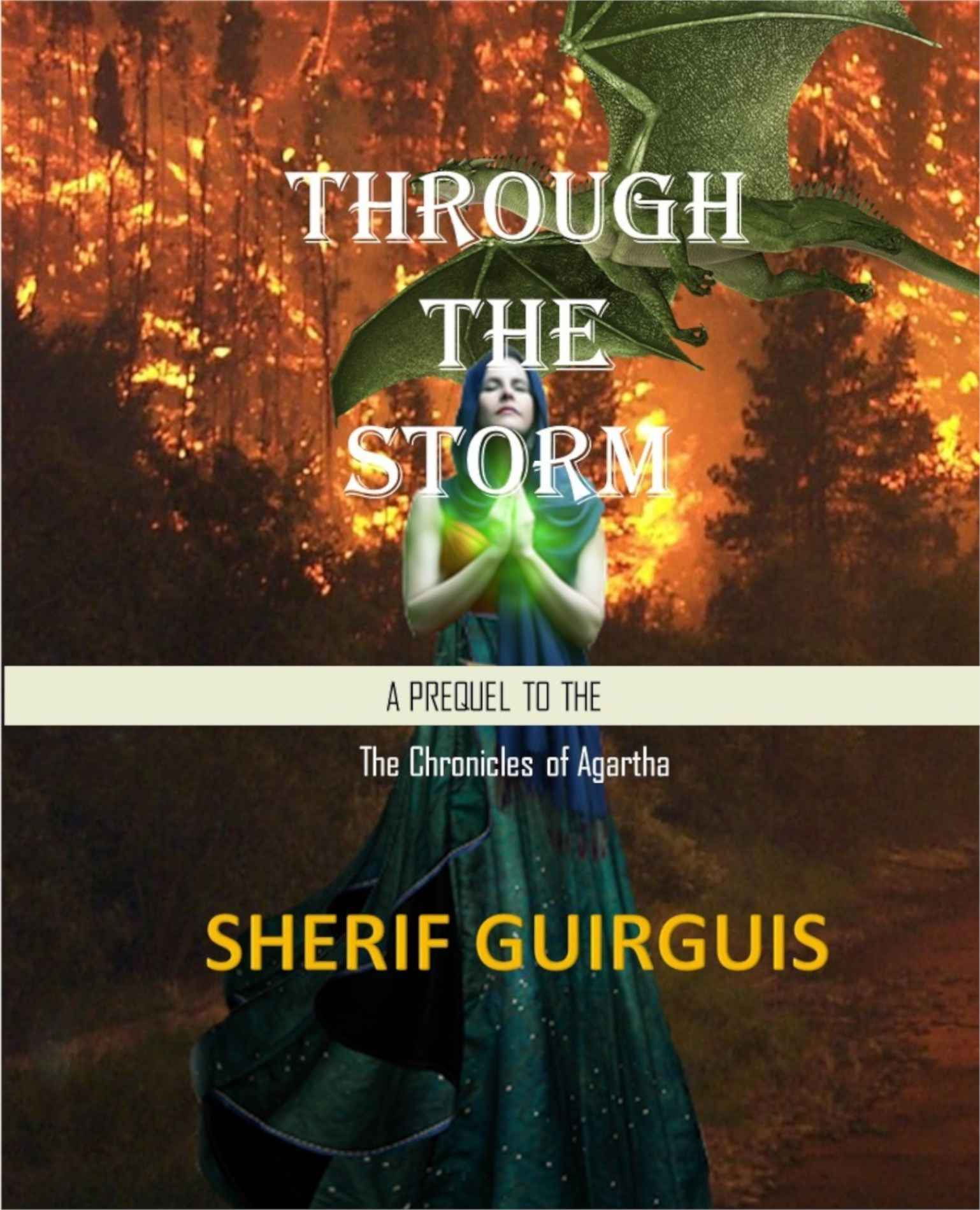 Through-the-Storm-Final-cover12