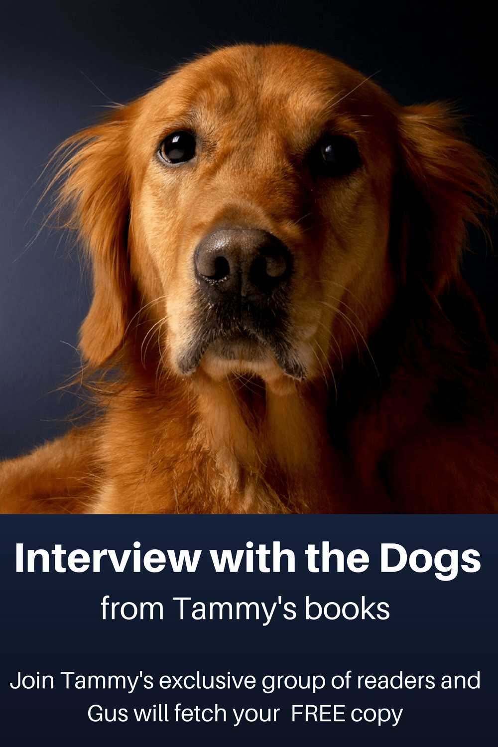 Interview-with-the-Dogs.png
