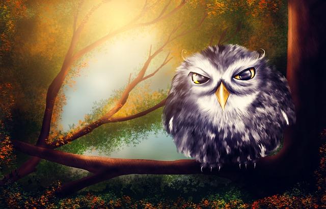 owl-2020011_640.jpg