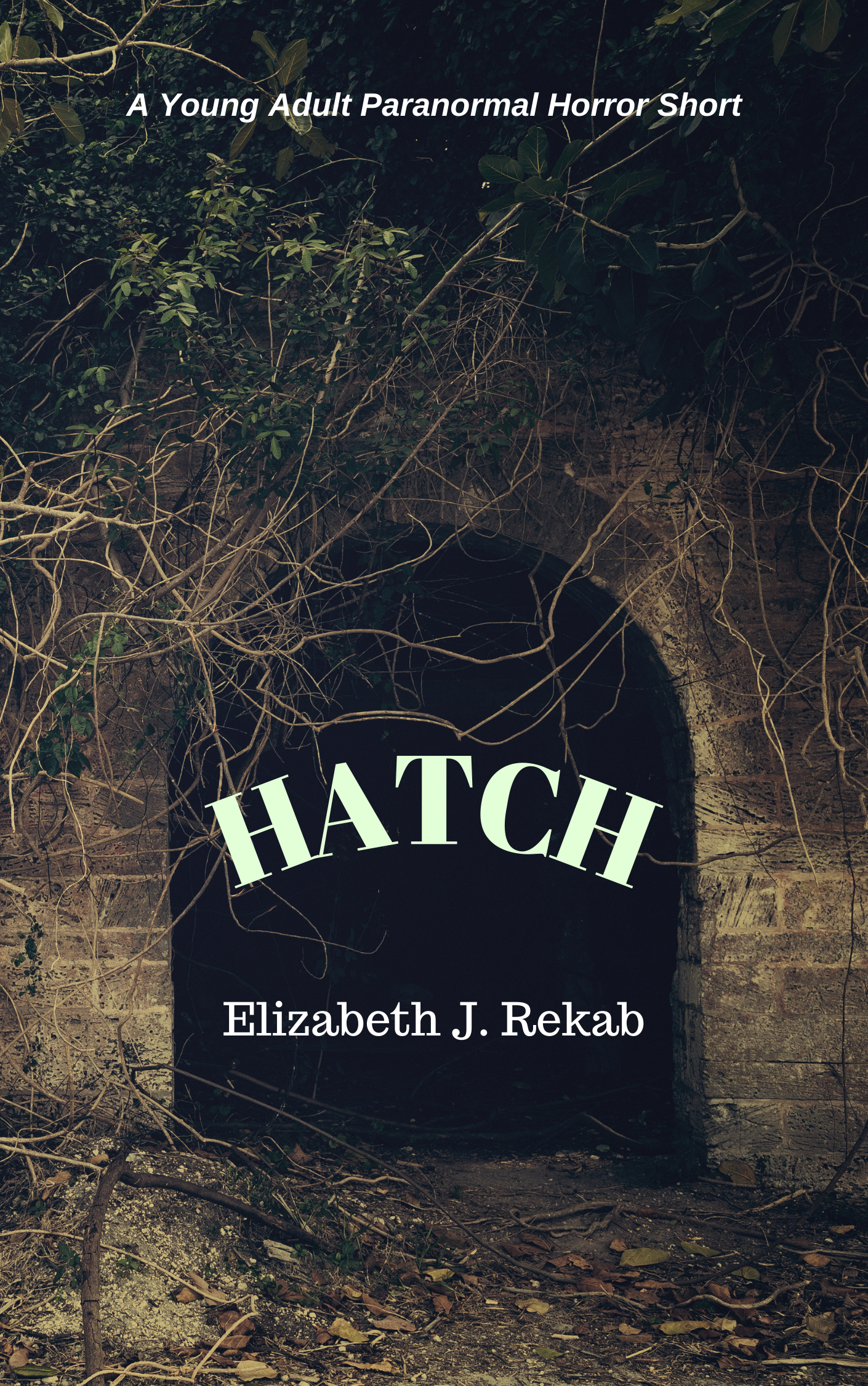 HATCH-3.png